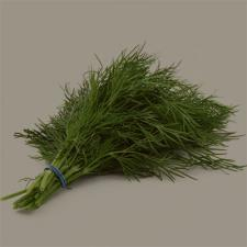 dill